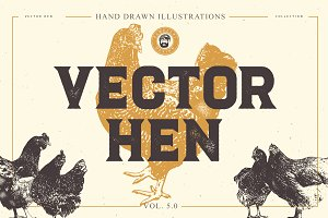 VECTOR HEN HAND DRAWN BUNDLE 5.0