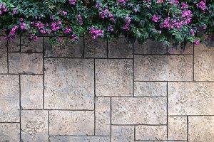 Masonry stucco wall texture
