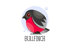 Bullfinch on a branch. Colored