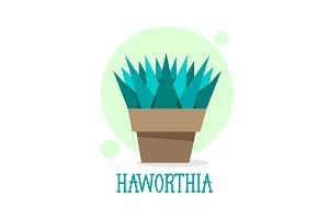 Succulent Haworthia in pot thin line