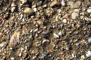 Weathered sea concrete texture