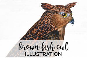 Fish Owl Brown Vintage Bird