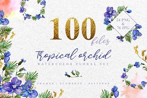 Tropical orchid Watercolor png