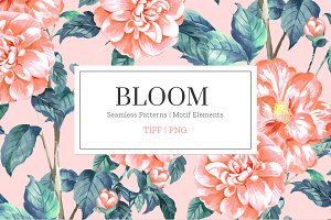 Bloom, Hand Painted Prints!