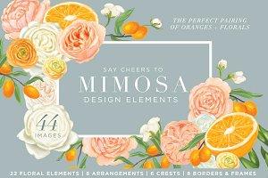 Mimosa Design Set | Oranges + Floral