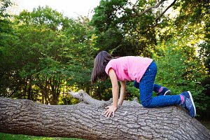 Climbing trunk.jpg
