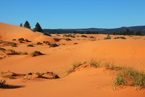 The orange, yellow and pink sand dun