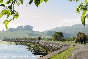 Santoña marshes, Cantabria, Spain.
