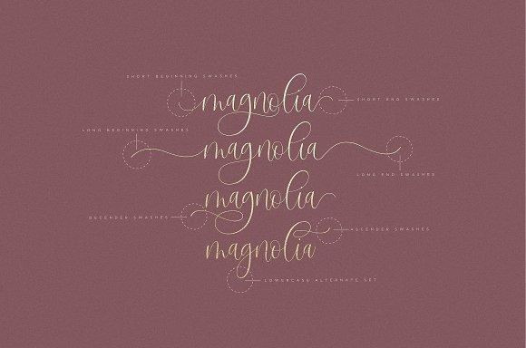 Sangria Script Font in Cursive Fonts - product preview 2