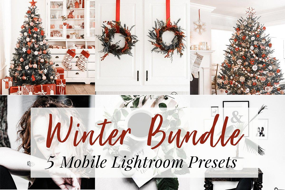 5 Winter Lightroom Mobile Presets