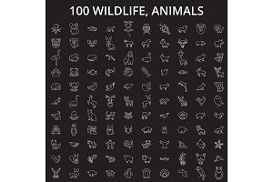 Wildlife, animals editable line