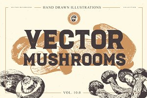 VECTOR MUSHROOMS BUNDLE 10.0