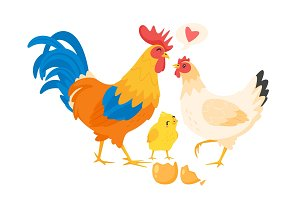 Chicken family: hen, rooster