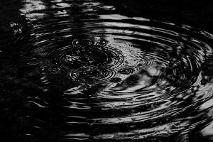 Puddle, Black and White, Mandala