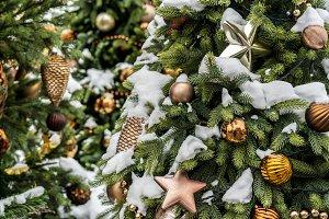 snowy decorated christmas tree branc