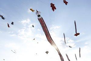 Kite flying in blue sky on Bali