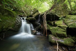 Small waterfall in Sesin river