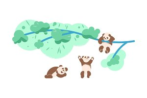 panda bears playing together
