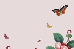 Flowers and butterflies wallpaper