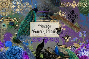 Vintage Peacock Clipart