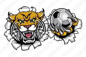 Wildcat Holding Soccer Ball Breaking