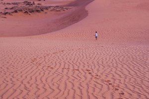 The boy runs around the red desert