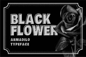 Armadilo font Display typeface