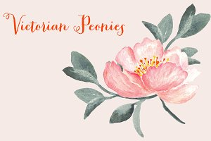 Peonies Victorian Watercolor Clipart