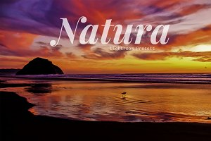 Natura Landscapes Lightroom Presets
