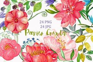 Peonies garden. watercolor Clip Art