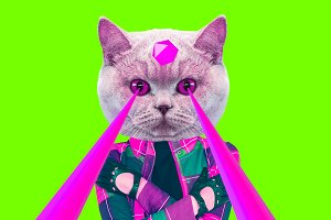Fashion hipster Cat with lasers from