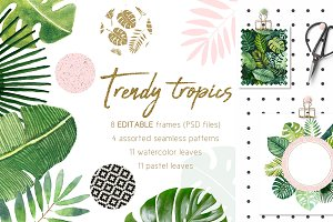 Trendy tropics frames and patterns