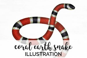 Coral Earth Snake Vintage Watercolor