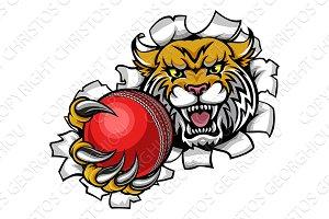 Wildcat Holding Cricket Ball