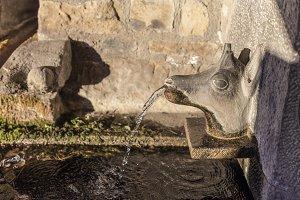 Deer-shaped fountain