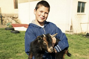 Preteen boy with a goat in his arms