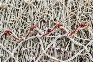 Fishing nets (74)