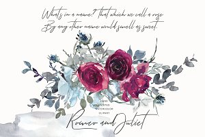 Watercolor Burgundy and White Roses