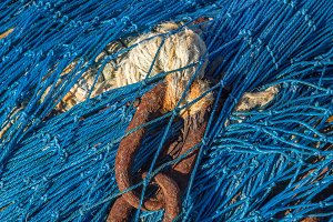 Chain on a fishing net (08)