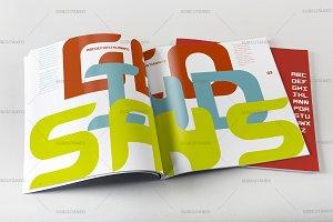 GEO IND SANS (Display) Typeface