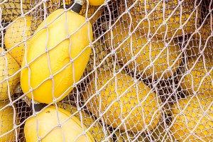 Fishing nets (86)