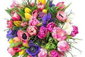 Bouquet spring tulip flowers isolate