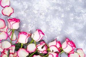 valentines day background frames