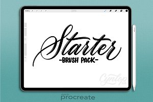 Procreate Starter Pack Brush Set
