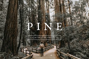 PINE Warm Moody Lightroom Presets