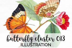 Butterfly Orange Watercolor Cluster