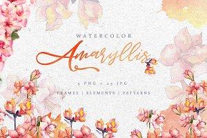 Amaryllis Watercolor Pink png