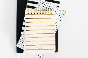 Blush & Gold Journal Image 001
