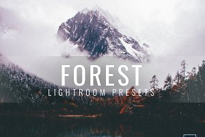 Lightroom Presets Moody Forest