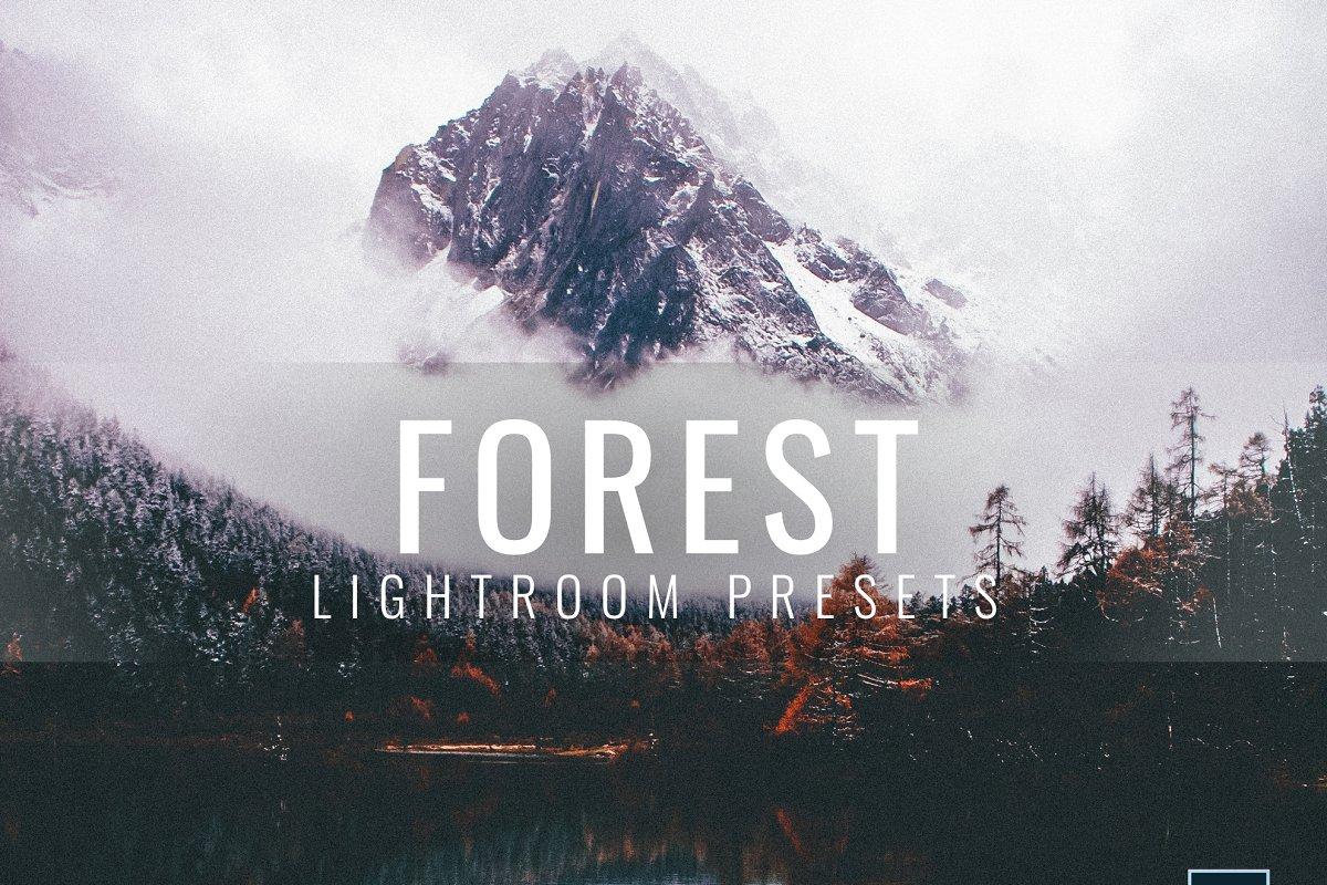 Lightroom Presets Moody Forest
